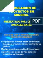 FORMULACION DE PROYECTOS EN MINERIA.pdf