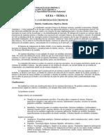 E_electronica caira.pdf