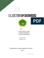 Makala Elektroforensis 2