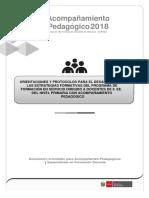 Orientaciones Para El Acompañamiento Pedagógico y Protocolo Del Acompañante Pedagógico 2018