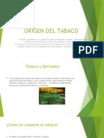 Origen Del Tabaco