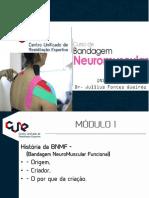 CursoBandagemOnLine.pdf