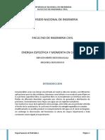 263466014-Energia-Especifica-y-Momenta-en-Canales.docx
