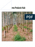 Impactos hule .pdf