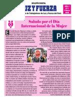 BOLETÍN DIGITAL LUZ Y FUERZA N° 2.pdf