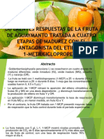 Paper p.cosecha Agumt-2