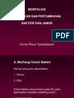 Praktikum FK04