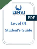 Level 1 Adult - Interchange Practice CENTU