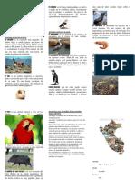 Animales oriundos del Peru