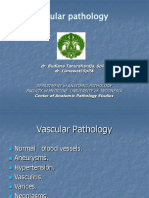 7b. Vascular Pathology 08
