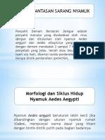 5. Psn (Pemberantasan Sarang Nyamuk)