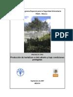 PESA_Hortalizas FAO 2007
