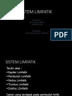 CSS Sistem Limfatik