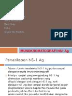 Imunokromatografi NS1