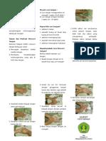 Leaflet Cuci Tangan Kel 14