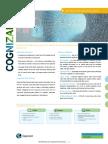 Cognizant Data Obscure Brochure