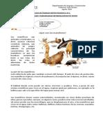GUIA DE TRABAJO clase 6 PARAFRASEAR.docx