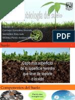 2 Microbiología del suelo.pdf
