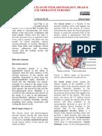 Buccinator+myomucosal+flap-1