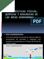 Características Físicas, Químicas y Biológicas de Las rocas generadoras