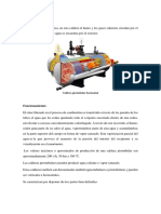 Caldera Pirotubular