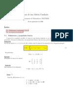 Traza.pdf