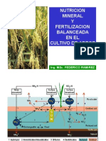NUTRICION_Y_FERTILIZACION_DEL_ARROZ_-_2006