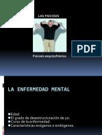 8. PSICOSIS ESQUIZOFRENICA