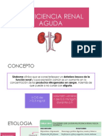 Patologia Renal