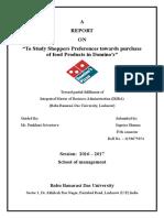 Domino's File Study
