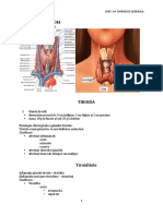 curs 3+4 tiroida.docx