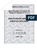 p.e.t.s Gapela s.a.c 2011