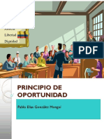 5. Principio Oportunidad