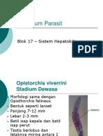 Praktikum Parasit