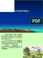 prezentare ecosistem
