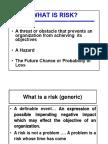 FMM Risk 1