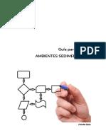 Guía para informe ambientes sedim 2017.docx-2