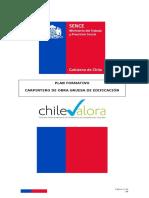 PLANIFICACION CARPINTERO DE OBRA GRUESA.pdf