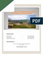 PROTOCOLO MOTILONES.pdf