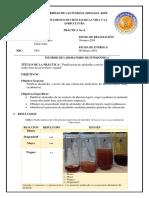 Informe-Purificación-Alcaloides