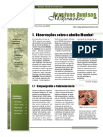 Livro-Abelha-Manduri-Meliponicultura.pdf