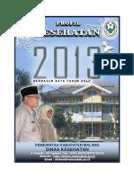 Profil Kesehatan Kabupaten Malang