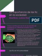 Martinezjuarez Nancy M01S4PI