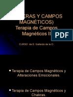 137987340-CHAKRAS-y-campos-magneticos.pdf