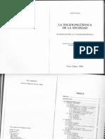 fasold.pdf