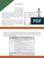 Efecto De La Electricidad Sobre El Cuerpo Humano.pptx