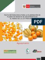 Pauta_planes_de_negocios_aguaymanto.pdf