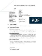 test bajo la lluvia de SANDRA.pdf