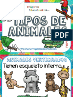 Clasificacion de los animales por tipo.pdf