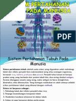 tugasbiologikelompok10-130905061055-